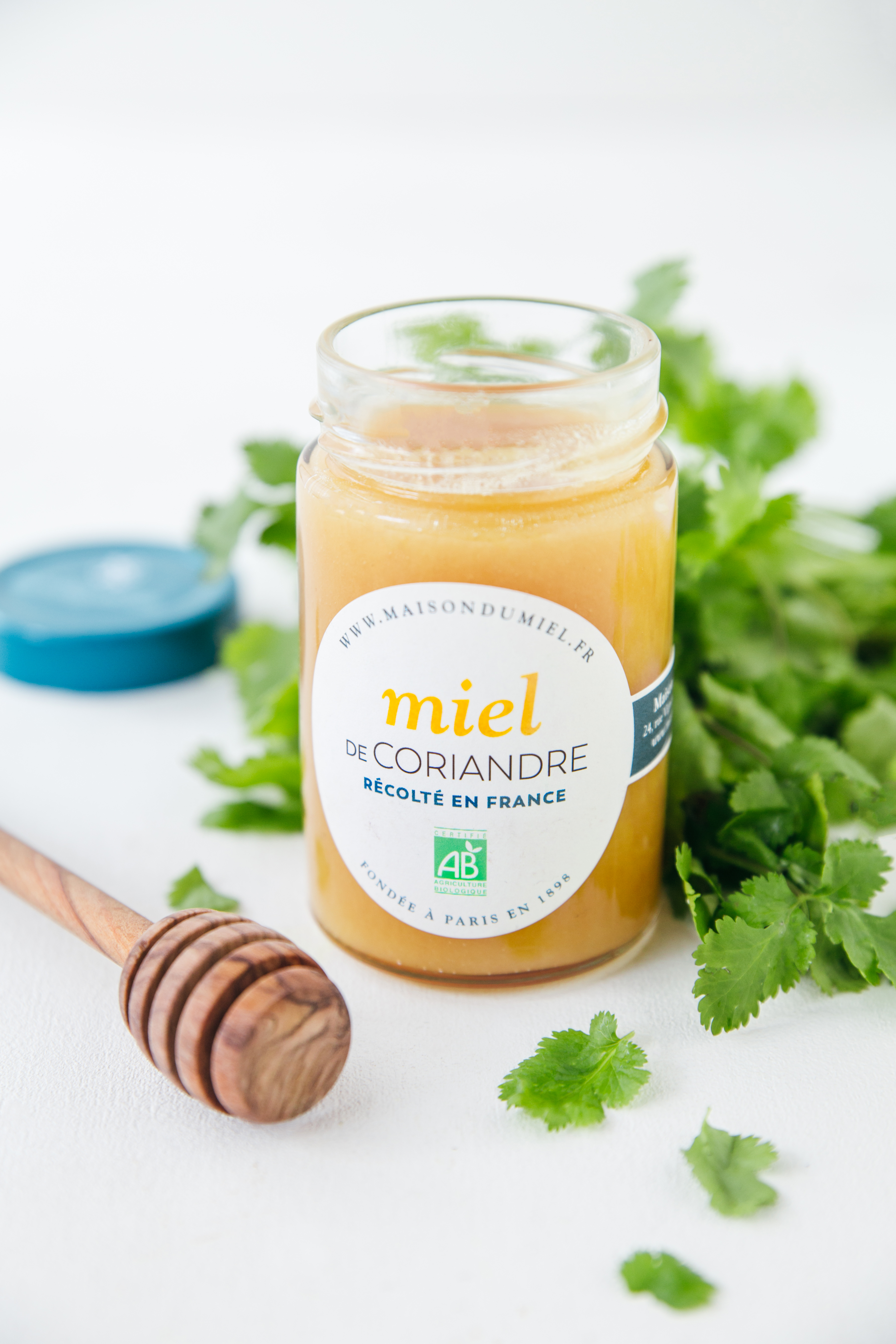 Miel de Coriandre Origine France BIO | La Maison du Miel